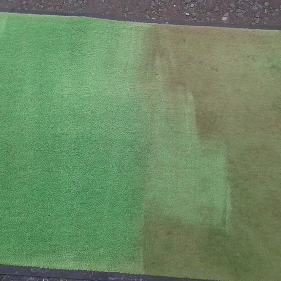 Green rug cleaning in process
