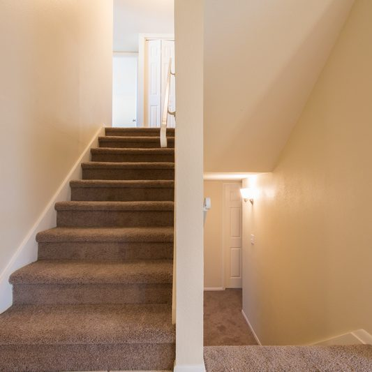 Stair case grey carpet with cream walls